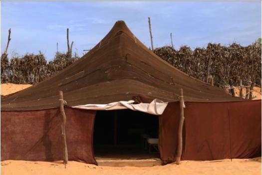 davids-tent